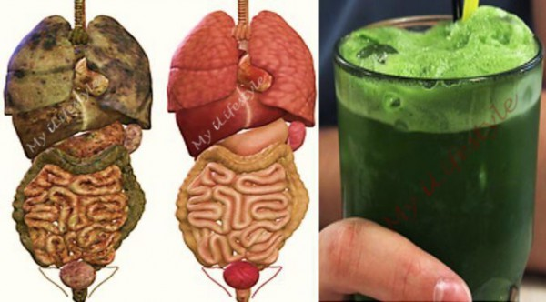 super-green-detox-drink-that-will-remove-all-toxins-and-fat-from-your-body-600x332