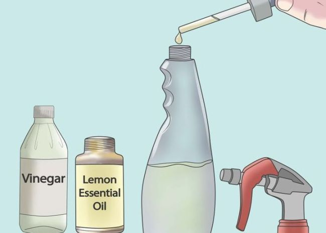 essential-oils-for-household-cleaning