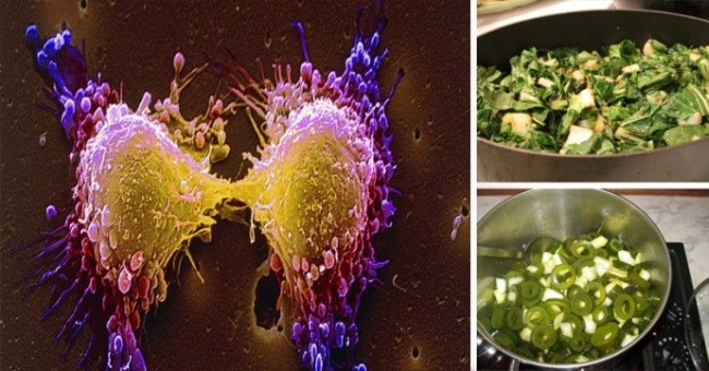 16 anti-cancer foods that help remove toxins and relentlessly hunt free radicals