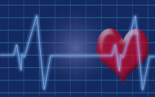 Nutrients best for your heart and how to attain them