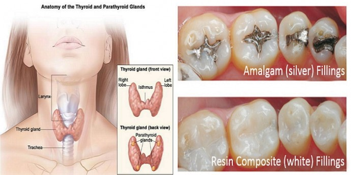 Header-How-To-Cure-Hypothyroidism-690×344