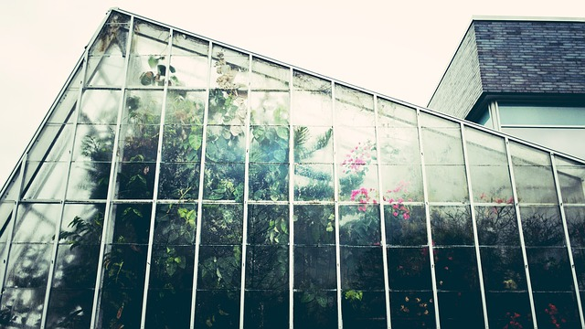The Impact of Greenhouses on the Environment 1