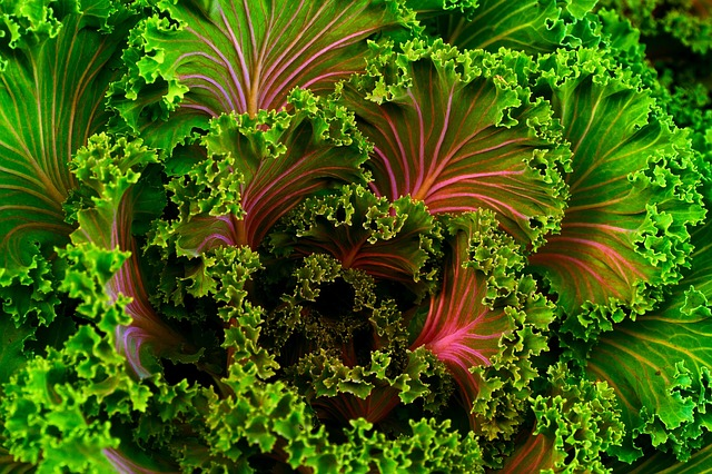 Eat your greens to help with bloating