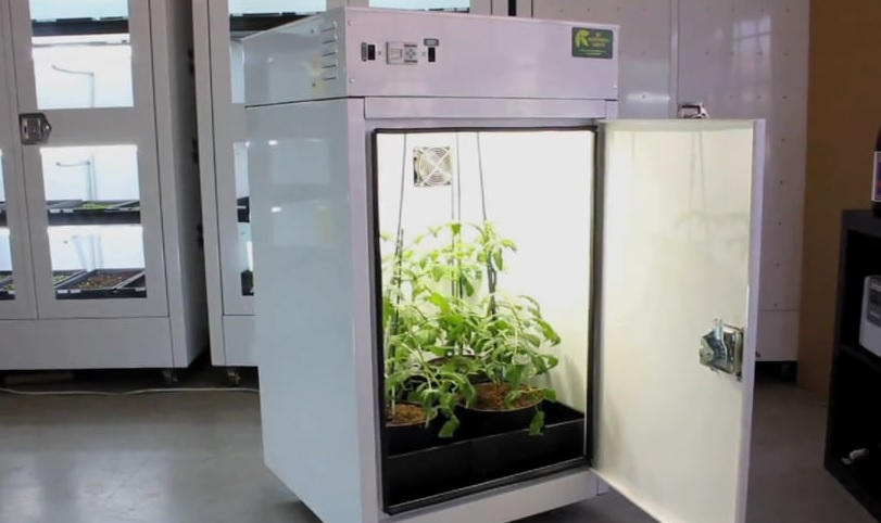 Make room for the room mate grow box in your life