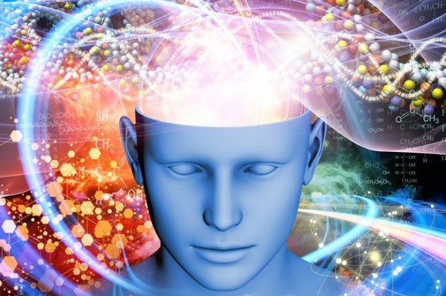 Scientists discover what hallucinogenic mushrooms do to your brain