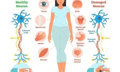 Autoimmune diseases: what are they and what do they do?